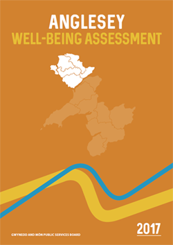 Anglesey Well-Being Assessment